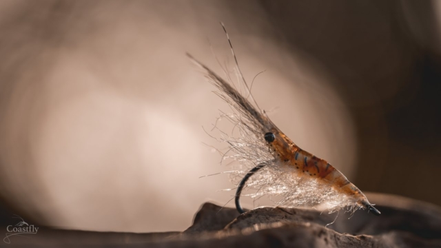 FLY-TYING-Sand-Shrimp-TUTORIAL