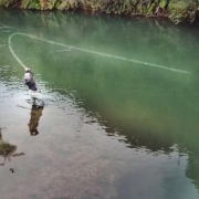 Fishing-The-BEST-Trout-water-I-have-ever-seen