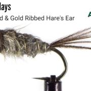 Gold-Beaded-Hares-Ear-Fly-Tying