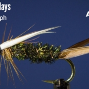 Prince-Nymph-Fly-Tying