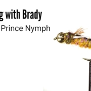 Psycho-Prince-Nymph-Fly-Tying