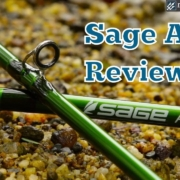 Sage-Accel-Fly-Rod-Review