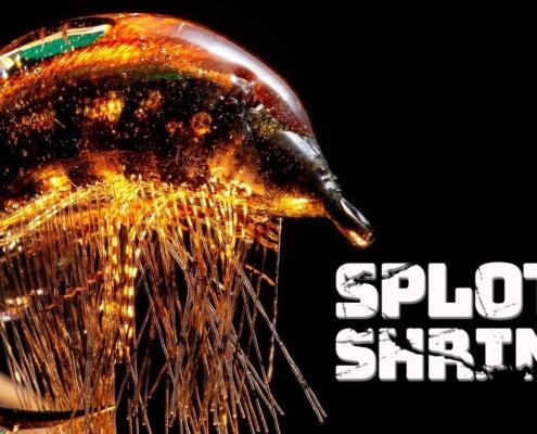 Splott-Shrimp