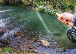 The-BEST-Trout-river-Ever-New-Zealand