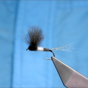 Tying-a-Large-Adult-CDC-MayFly-with-Davie-McPhail