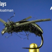 Water-Boatman-Fly-Tying