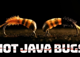 Hot-Lava-Bugs-East-to-tie-and-deadly-in-fast-water