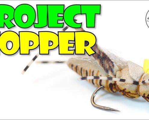 REALISTIC-Hopper-Fly-Pattern-Project-Hopper-v2