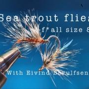 Sea-trout-flies.-fall-size-8.-E-1.With-Eivind-Berulfsen