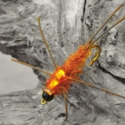 Tying-the-Carty-Stonefly