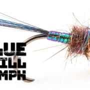Blue-Quill-Nymph-A-great-little-fly-for-trout-and-grayling