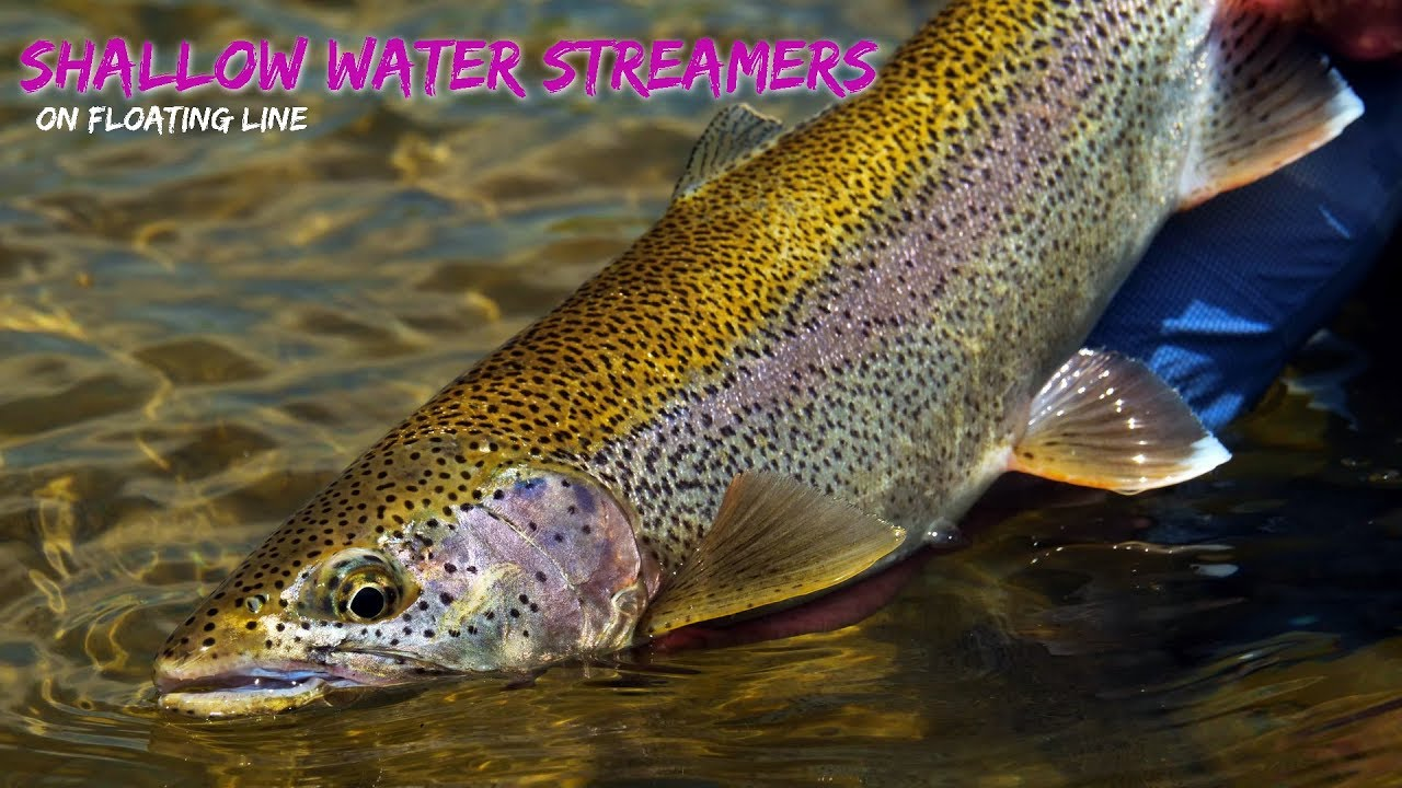 Fishing-Streamers-on-Floating-Line-in-Shallow-Riffles-Edges