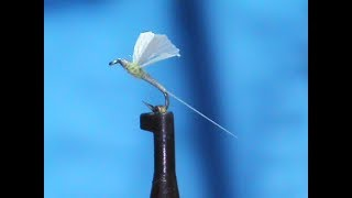 Fly-Tying-a-GB-No-Hackle-BWO-with-Jim-Misiura