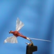 Fly-Tying-a-GB-Rusty-Spinner-with-Jim-Misiura