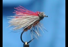 Fly-Tying-a-Gartside-Bi-Color-Caddis-with-Jim-Misiura