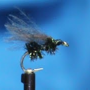 Fly-Tying-a-Walklet-Ant-with-Jim-Misiura