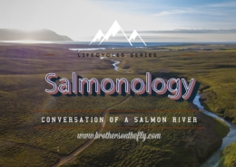 Salmonology-Conservation-of-a-Salmon-River