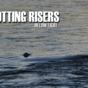 Spotting-Risers-in-Low-Light