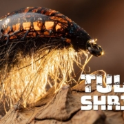 Tulle-Shrimp-A-new-material-for-building-shellbacks-for-shrimps-and-nymphs