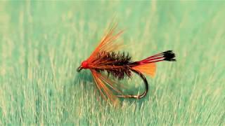 Tying-a-Flame-Ke-He-with-Martyn-White-wet-fly