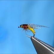 Tying-the-McPhail-Caddis-Pupa-by-Davie-McPhail