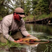 Advanced-Tactics-Fly-Fishing-with-Droppers-The-Set-Up