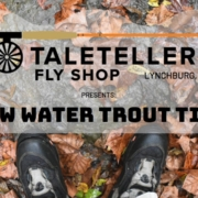 Low-Water-Trout-Tips