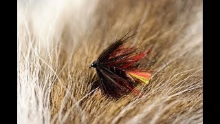 Tying-a-Clan-Chief-with-Martyn-White-wet-fly