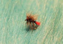 Tying-a-Coch-Zulu-with-Martyn-White-wet-fly