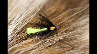 Tying-a-Fionn-Spider-with-Martyn-White-wet-fly