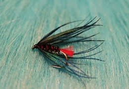 Tying-a-Goats-Toe-with-Martyn-White-wet-fly