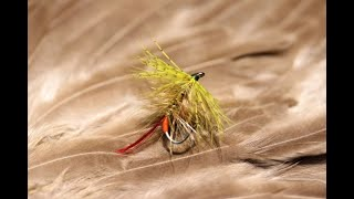 Tying-a-Golden-Olive-Dark-Barred-Ginger-Bumble-with-Martyn-White-wet-fly
