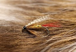 Tying-the-Professor-with-Martyn-White-wet-fly