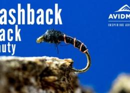 Flashback-Black-Beauty-Fly-Tying
