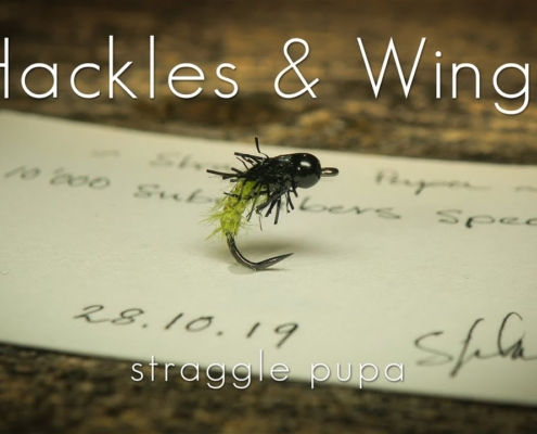 Fly-Tying-Straggle-Pupa-Hackles-Wings