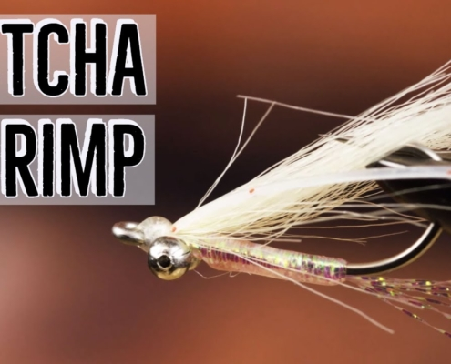 Gotcha-Shrimp-Fly-Tying-Tutorial