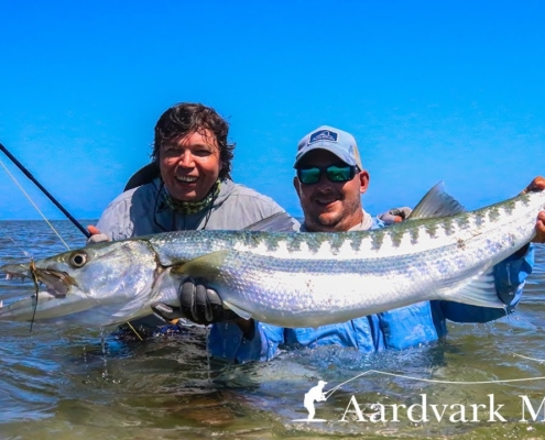 How-To-Catch-Barracuda-On-The-Fly