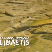 Hubbards-Lodge-Montana-Story-Lake