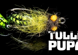 Tulle-Pupa-A-great-year-round-pattern-for-trout-and-grayling