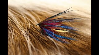 Tying-a-Brigadier-with-Martyn-White-wet-fly