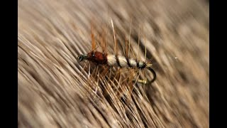 Tying-a-Super-Pupa-with-Martyn-White-dry-fly