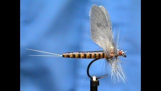 Fly-Tying-Realistic-Red-Quill-with-Jim-Misiura