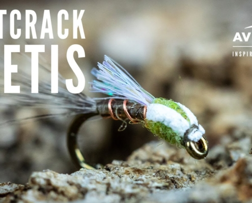 How-to-tie-the-Buttcrack-Beatis-Fly-Tying