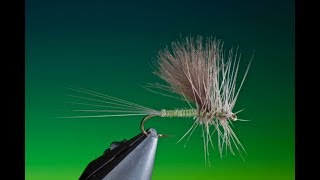 Tying-a-Thorax-Dun-with-Barry-Ord-Clarke