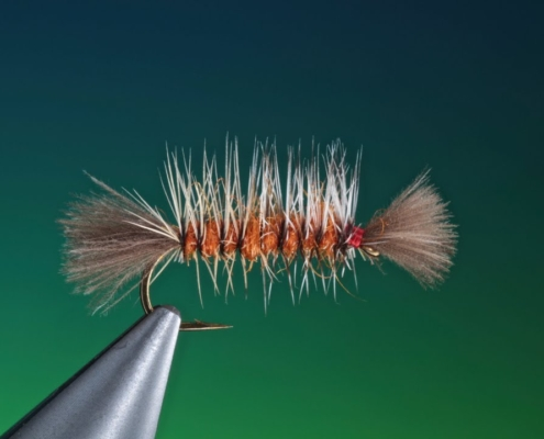 Tying-a-palmered-Shipmans-with-Barry-Ord-Clarke
