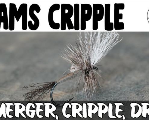 Adams-Cripple-Emerger-Cripple-Dry-Fly
