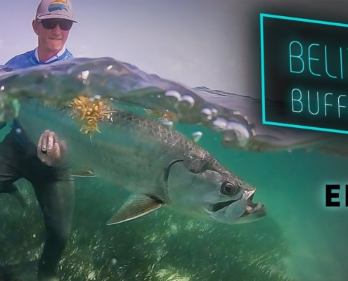 Belize-Buffet-Tarpon-and-Permit-Fly-Fishing