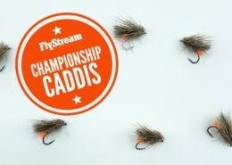 FlyStream-Summer-201920-Championship-Caddis