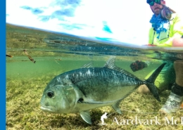 How-To-Catch-Giant-Trevally-On-A-Fly