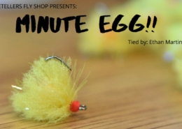 Minute-Egg-Fly-Tying-Tutorial